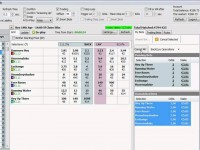 Betfair trading horse racing