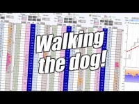 Betfair trading – Trading horse racing – 'Walking the dog'