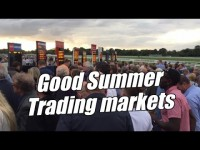 Peter Webb – Bet Angel – Why some Betfair racing markets are better to trade than others