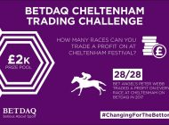 How to win on all 28 races on the Cheltenham Festival