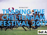 Peter Webb – Cheltenham 2017 – Trading highlights and information