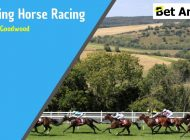 Betting tips and Betfair trading – 'Glorious' Goodwood 2019