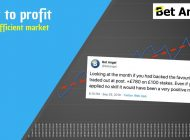 Peter Webb – Bet Angel – Profiting in 'perfectly efficient' betting markets