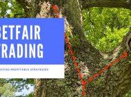 Betfair trading | Creating a profitable Betfair trading strategy