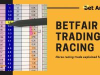 Horse racing trading on Betfair | A simple trade explained in depth betting exchange