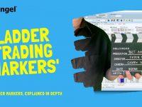 Betfair trading software   Bet Angel   Ladder 'markers'