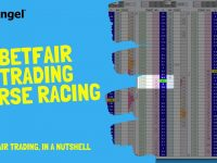 Betfair trading on a horse racing, explained in 3 minutes