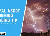 Betfair trading – Absolutely storming trading tip to get you a reliable result!